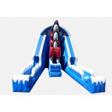 Raging Rapids 22' Penguin Wet and Dry Slide - Commercial Grade Inflatable